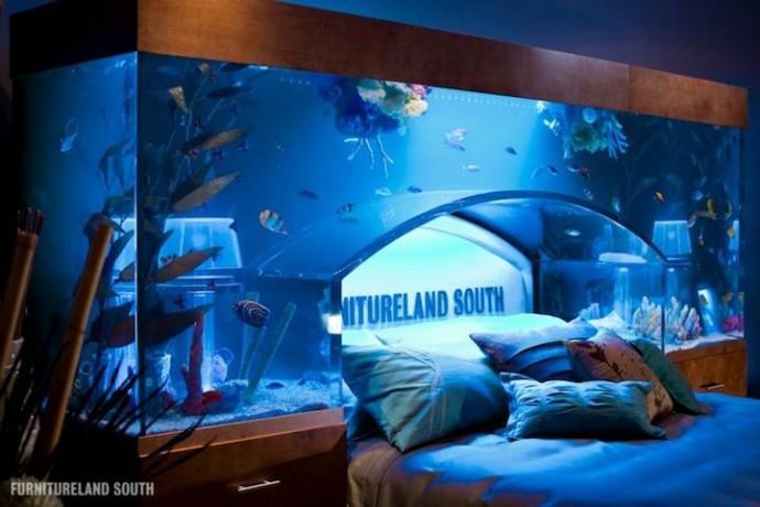 Was f r meerwasser aquarien gibt es meerwasser for Salzwasser aquarium fische