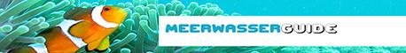 Meerwasser-Guide.de