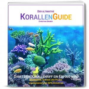Korallenguide-Paperback