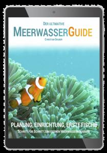 Der ultimative Meerwasser-Guide